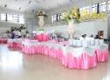 Buffe Panjang Pink Silver (Balai Prajurit 3 April 2016)